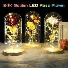 golden, Flowers, everlastingflower, Romantic