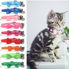 bowcollar, catcollar, safetybuckle, Pets