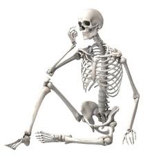 Bar, Skeleton, house, Ornament