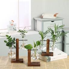 Plants, waterplantingglassvase, Shelf, plantvasewithpot