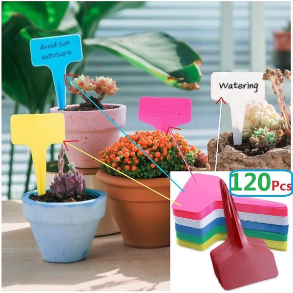 Plant Labels Plastic Markers