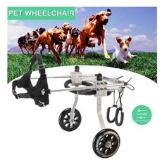petwheelchair, paralyzedpet, dogsampcat, rehabilitationtrainer