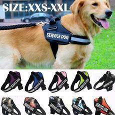 Vest, Harness, Hooks, servicevest