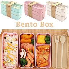 case, Box, Picnic, bentobox