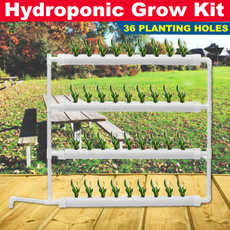 gardenplanting, planting, Plants, soillessplanting