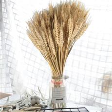 wheatandbarley, driedwheatbunch, wheatear, Home Decor