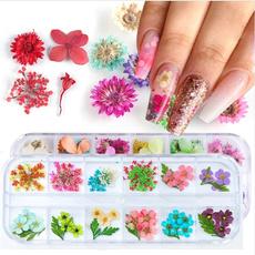 Flowers, driedflower, Beauty, Nail Art Accessories