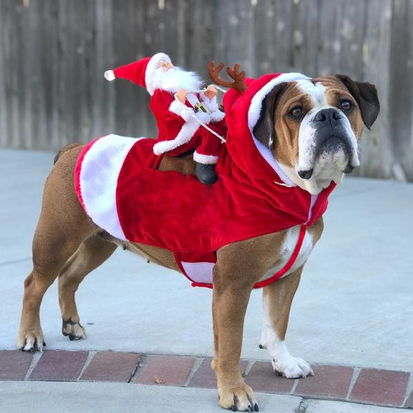 Dog Clothes Christmas Costumes Santa