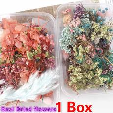 Beautiful, Box, flowersampplant, driedflowerpendant