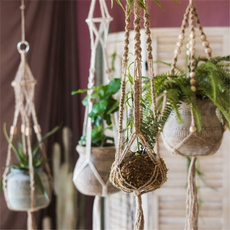 Plants, Home Decor, Home & Living, planthangingbasket