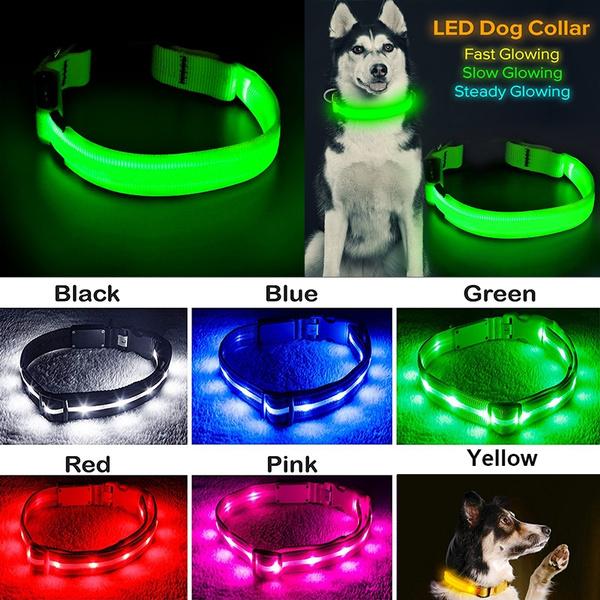 pet dog, Nylon, Dog Collar, Glow