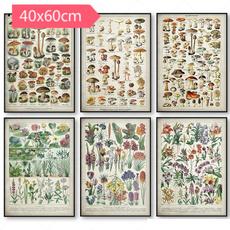 Wall Art, Mushroom, Posters, educationalposter