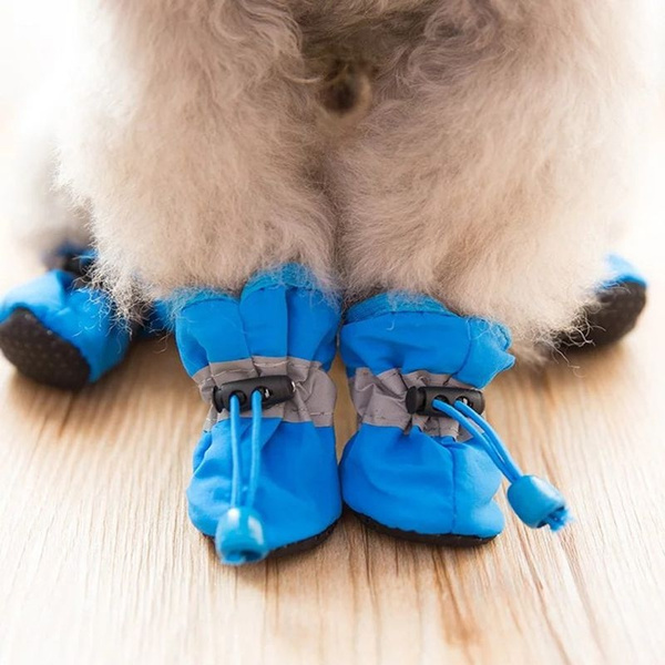 Booties, puppy, petaccessorie, Waterproof
