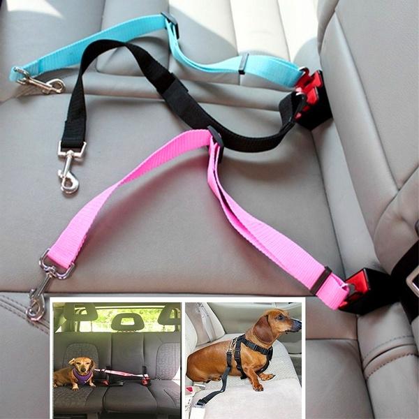 Rope, petleashe, carpetseatbelt, seatbelt