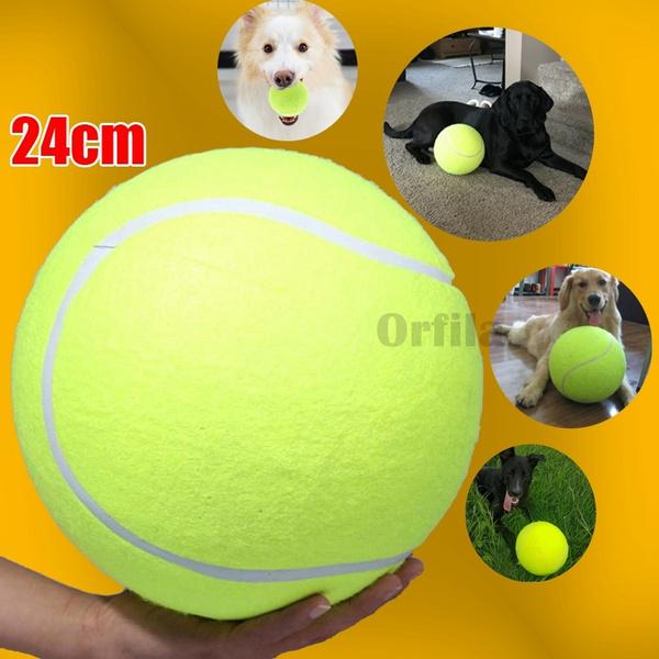 Tennis Ball Thrower Chucker Launcher