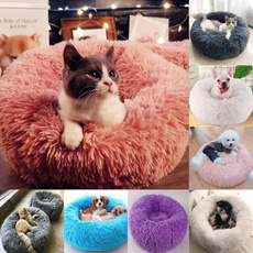 cute, dogsofabed, Pet Bed, Pets