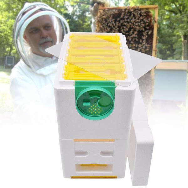 Box, beeharvestbeehive, beekeeping, beekeepingsupplie