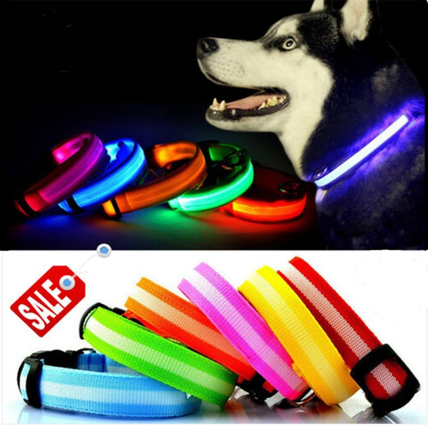 light up, dogsafetylight, Dog Collar, petflashingtag