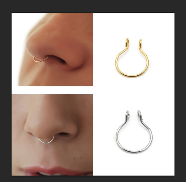 Nose Ring A Dainty Fake Faux Septum Ring Stainless Steel 14k