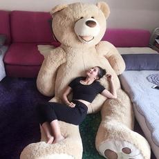 Plush Toys, Stuffed Animal, Toy, Beds