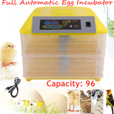 poultry, Farm, hatcher, hatchermachine
