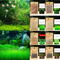 aquariumaccessorie, decoration, Grass, Love