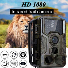 trailcamera, Outdoor, nightvision, Hunting