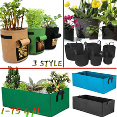 Flowers, Gardening, plantcontainer, potatobag