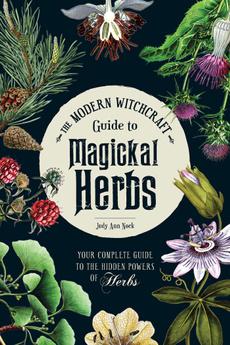witchcraftreligion, witchcraft, herbsspell, wiccaforbeginner