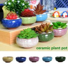 Bonsai, Plants, Flowers, pottedlandscape