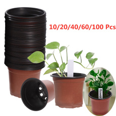 seedlingsflowerpot, plasticpot, Office, gardernflower