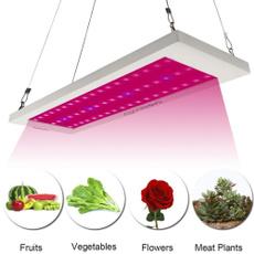 greenhouselight, Flowers, led, lights