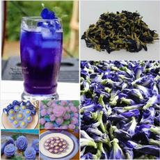 butterfly, Blues, foodcoloring, detoxtea