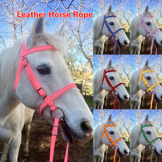 Rope, horse, Fashion, horsehalter