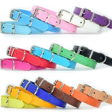 bigdog, Medium, Dog Collar, Colorful