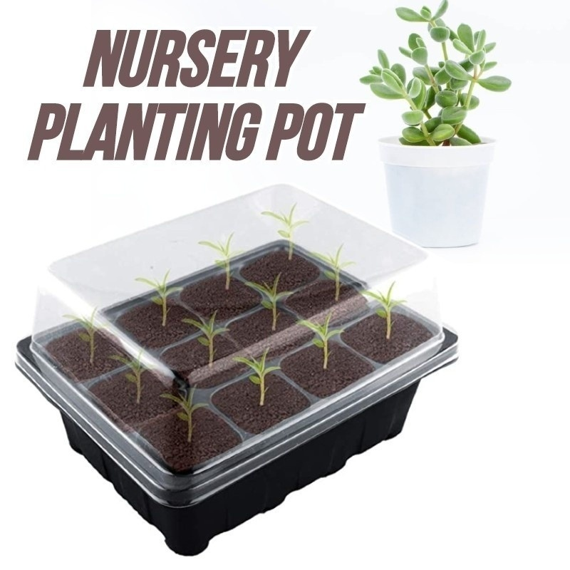 6/12 Holes Plastic Nursery Pots Planting Seed Tray Kit Plant Germination Box with Dome and Base Garden Grow Box Gardening Supplies
