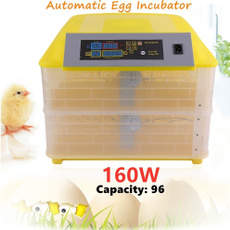 poultry, automaticincubator, Farm, hatcher