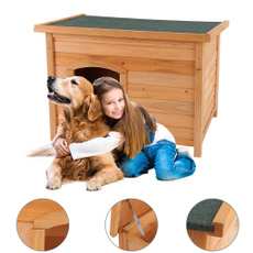 Outdoor, dogkennel, Winter, dog houses