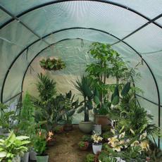 Plants, Outdoor, greenhouseoutdoor, Sports & Outdoors
