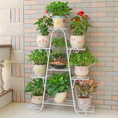 Home & Kitchen, Plants, Outdoor, Home Decor