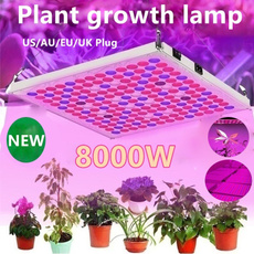 Plantas, lights, led, Garden