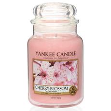 blossom, Candle, Decor, Home Decor
