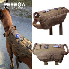 Training, Outdoor, petaccessorie, Army