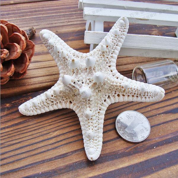 party, seastarfashionjewelry, shells, Star