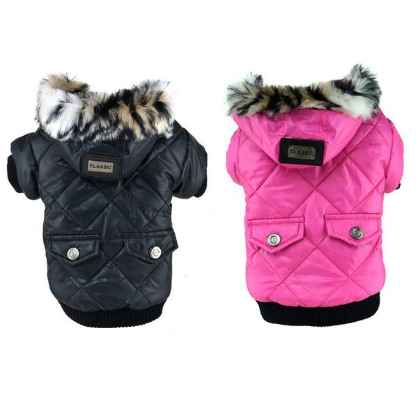 Fashion, dog coat, puppy, Pets