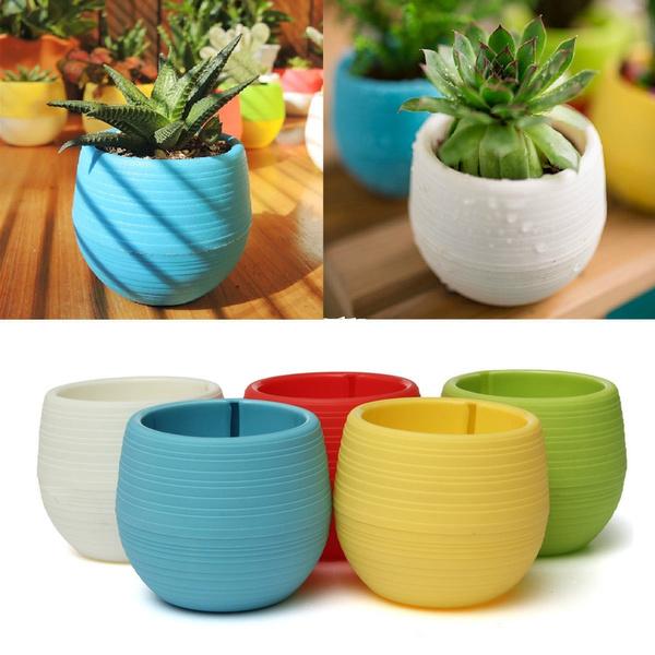 Plants, Flowers, planter, Colorful
