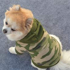 pink, Fashion, puppy, Pets
