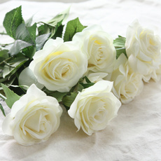 latex, Head, Flowers, fakeroseflower