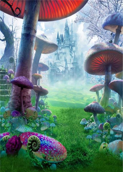 vinylbackground, Mushroom, backdropsbackground, fantasy