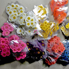 pressedflower, Flowers, driedflower, pressedflowerjewelry